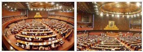 Pakistan new representatives